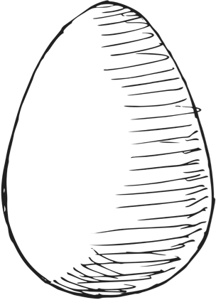 Hand drawn egg